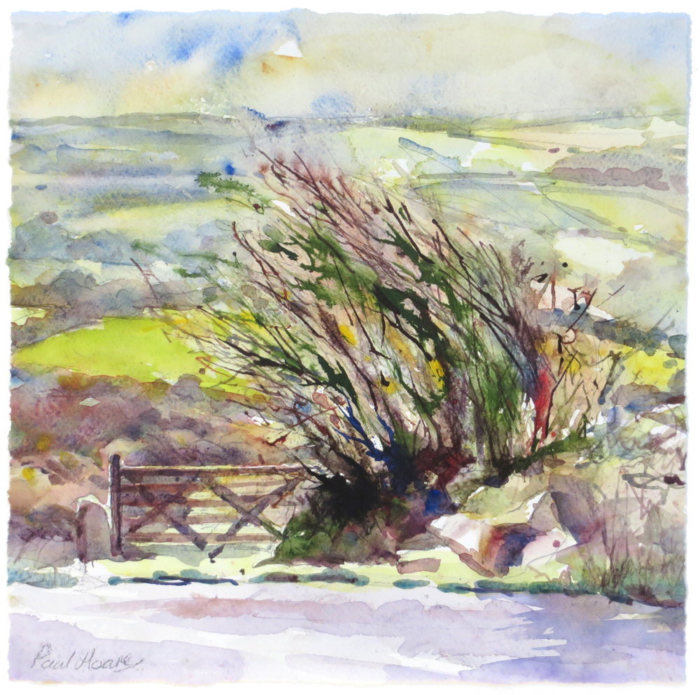 'It could only be Cornwall' painting by Paul Hoare